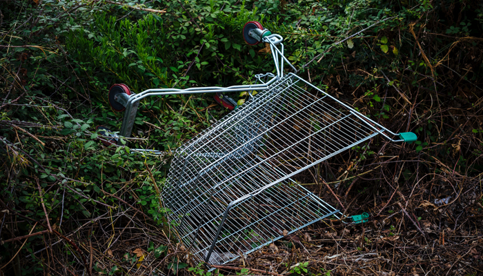 How to Evade Shopping Cart Abandonment