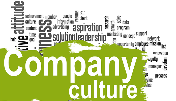 3 Reasons Why Company Culture Is so Important