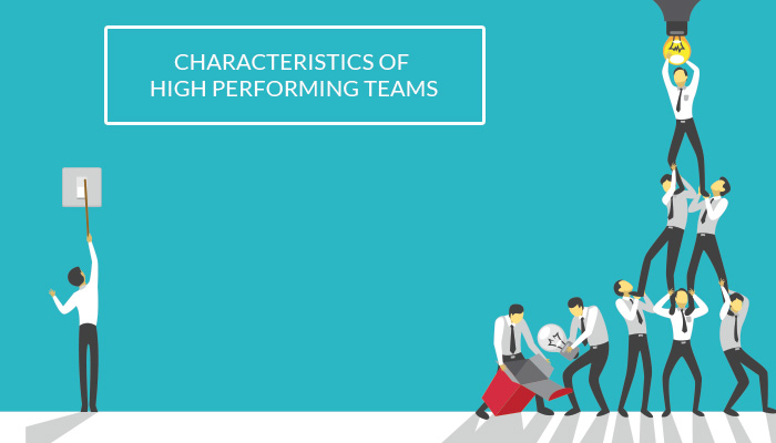 Characteristics of High Performing Teams